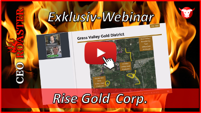 CEO-Roaster Webinar mit Rise Gold Corp.